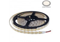 LED Streifen 12V Professional
